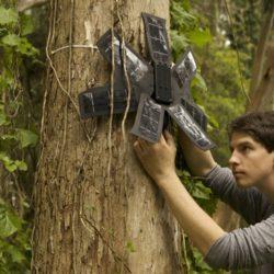 Rainforest Connection : lutter contre la déforestation avec des smartphones recyclés