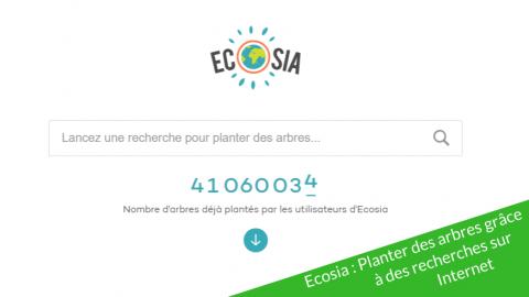 Ecosia : Planter des arbres grâce aux recherches sur Internet